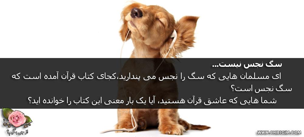 سگ در قرآن
